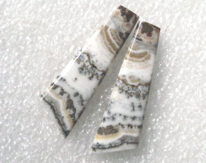 Silver Lace agate long earring cabochons