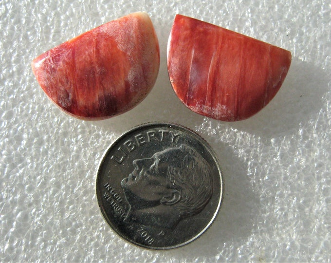 Spiney Oyster Shell cabochon pair