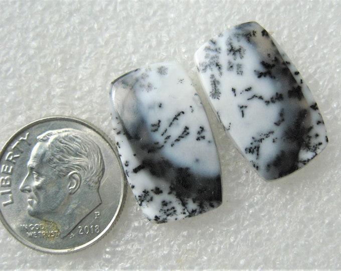 Dendritic Agate earring cabochons