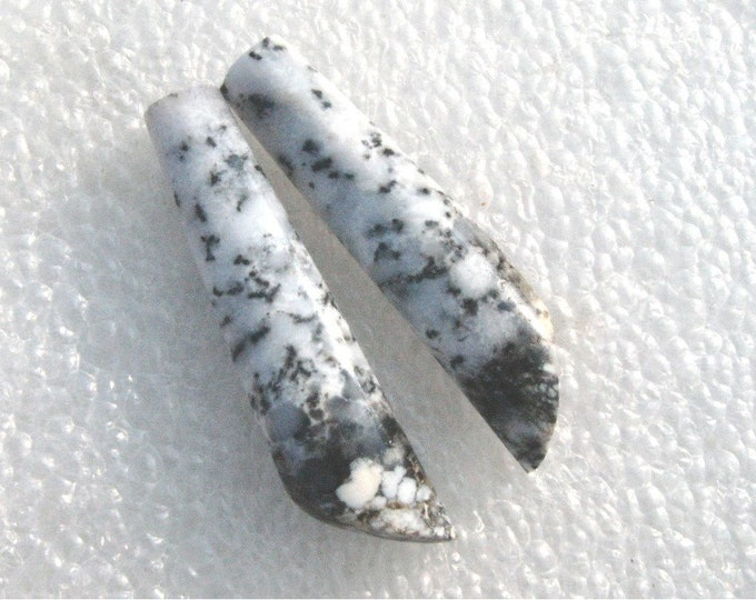 Dendritic Agate long earring cabs