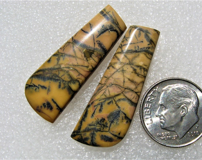 Yellow Feather Jasper earring Cabochons