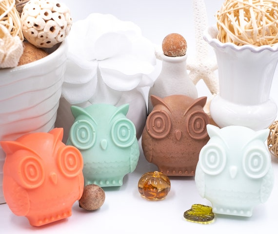 Fun Fall OWL in Pumpkin Spice Scent | 3.5oz |  Welcome Autumn! | Melon, Turquoise, Soft Blue, Cocoa Brown