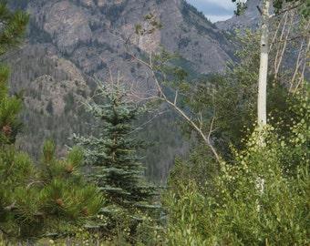 Rocky Mountain National Park, Colorado Photo