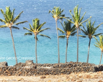 Palm Trees, Hawaii, Beach, Big Island