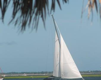 Summer Breezes  in Charleston SC