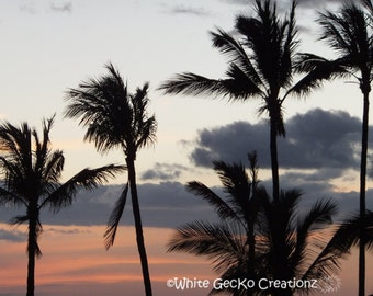 Palm Trees, Hawaii, Sunset, Beach