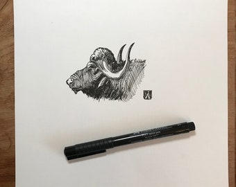 KillerBeeMoto: Original Pen & Ink Sketch of Water Buffalo (Limited Prints Available As Well)