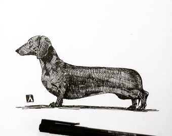 Print of Original Pen And Ink Drawing of dachshund Wiener Dog