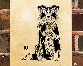 KillerBeeMoto: Limited Release Print of Border Collie Sheep Dog