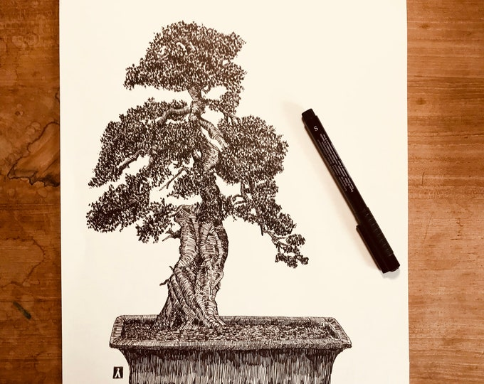 Original Pen And Ink Drawing of Bonsai Tree (Prints Also Available)
