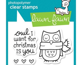 Lawn Fawn - Winter Owl- Clear Stamps