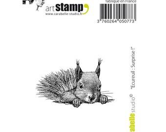 Carabella Studio-Cling Mini Stamp - Squirrel Surprise!