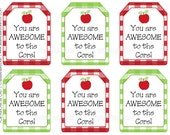 photograph regarding Printable Teacher Gift Tags known as Your self are Incredible toward the Main Reward Tags, Printable Instructor Appreciation Tags, by means of SUNSHINETULIPDESIGN