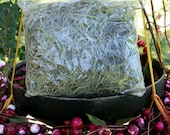 Spanish Moss 4 Ounce Bag Fresh Hand Picked Live Air Plant From Historic Savannah Georgia