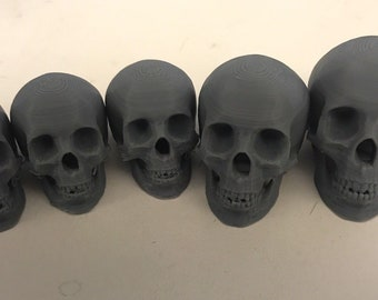 Plastic skull for sculpting armature with clay, sculpey, etc