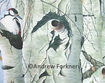 Out on a Limb. Limited Edition Fine Art Giclee Print of a Great Spotted Woodpecker. Individually signed and numbered by the artist.