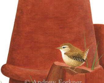Eurasian Wren. Limited Edition Fine Art Giclee print. Individually signed and numbered by the artist.