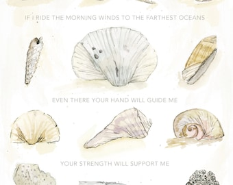 Seashells, Psalm 139:9 | Watercolor | Lettering