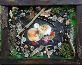 Mushrooms in the Woods Shadowbox by Amy Brandum, 16x20, mixed media,acrylic, nature,original,shadow box,wall art, painting on canvas,shells