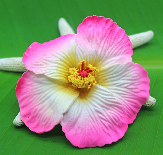 Pink Hibiscus Hair Clip Beach Weddings Hula Hawaii Hair Etsy