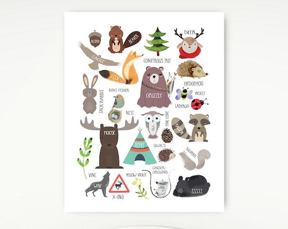 Woodland Alphabet, Nursery Print, Nature, Field Guide, Alphabet Poster, Animals #674
