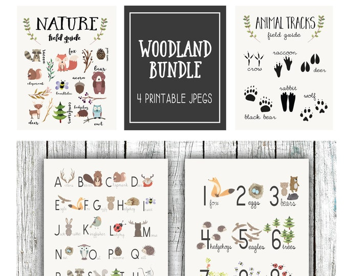 Featured listing image: Woodland Nursery Bundle, Nature Posters, Field Guide, four printable 16x20/8x10 JPEGS #2
