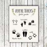 Nursery Art Printable, Animal Tracks Poster, Woodland Nursery,  Digital Download #684