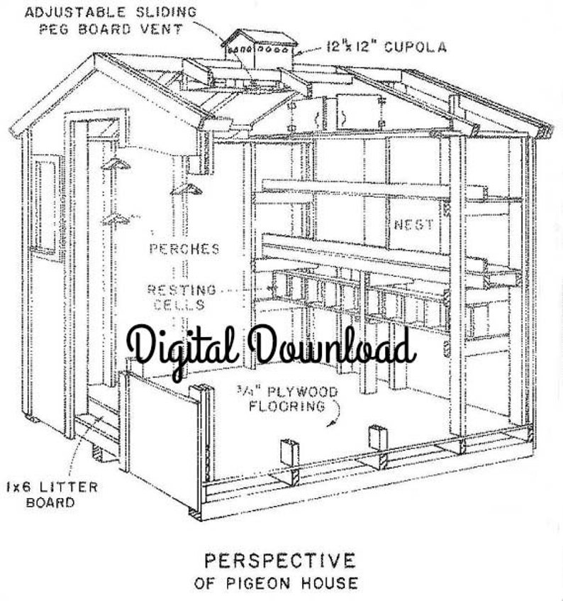 Chicken/Pigeon Coop Blueprint, Includes Nest Boxes, 8x8 Hen House, Brooder  Layers Bantams, DIY Poultry, PDF Instant, Digital Download