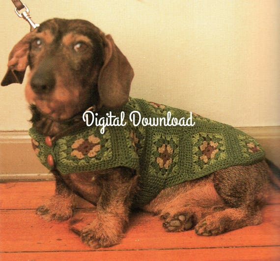 Small Dog Dachshund Sweater Puppy Hippie Granny Square Etsy