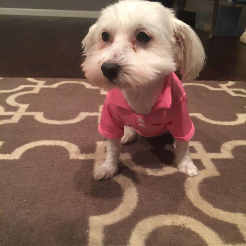 Dog Shirt Dog T Shirt Blank Dog Shirt Small Dog Clothes Etsy