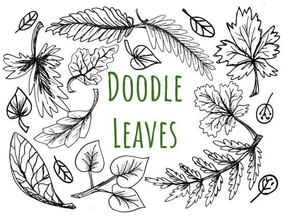 Doodle Leaves Clip Art hand drawn black and white leaves | Etsy