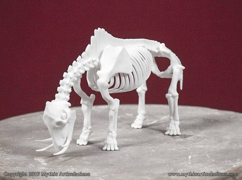 Catoblepas Skeleton 3D Print Taxidermy Sculpture image 0