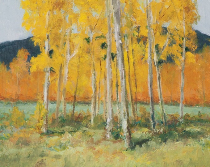 Original Oil Painting Study, Aspen Trees near Taos New Mexico