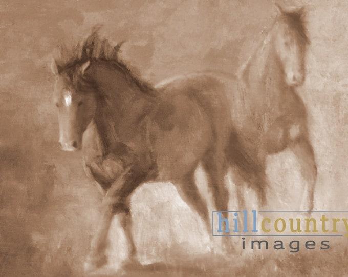 Wild Stallions, Horses, Signed Fine Art Print