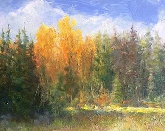 Golden Light, Original 6x8 Mini Oil Painting