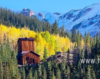 Colorado Golden Fall Aspens Signed Fine Art Photography Print