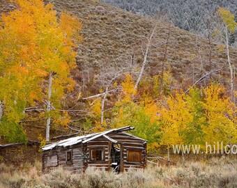Old Timers Log Cabin, Idaho