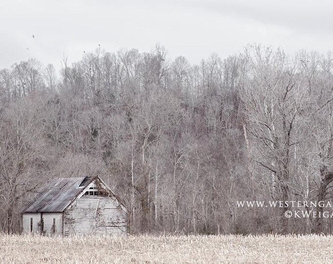 Simplicity, Old Tennessee Barn Fine Art Print