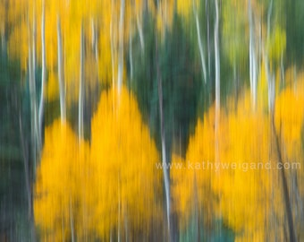 Large Abstract of Aspens 2, Canvas Wall Print