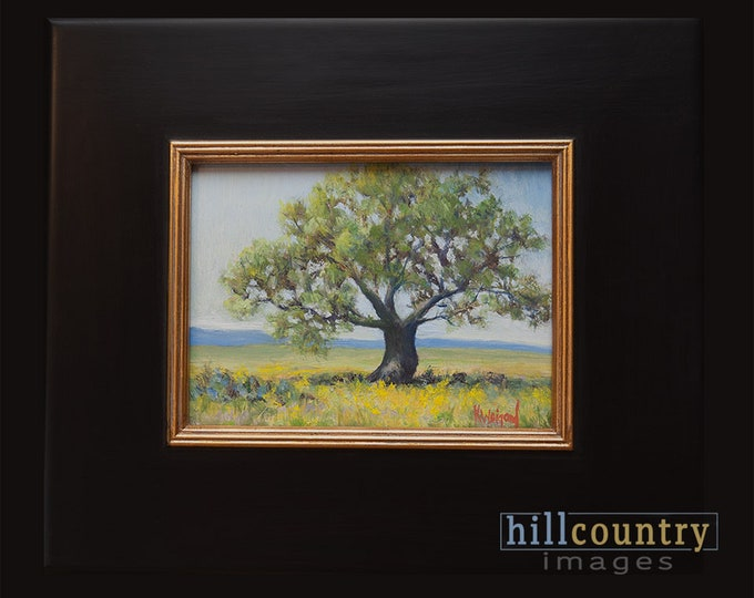 Original Oil Painting, Lone Oak, Framed Artwork