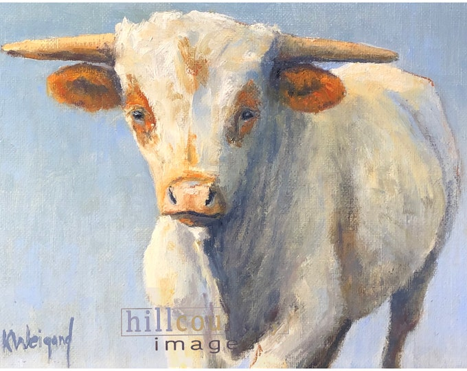 Original oil painting, Young Longhorn Calf