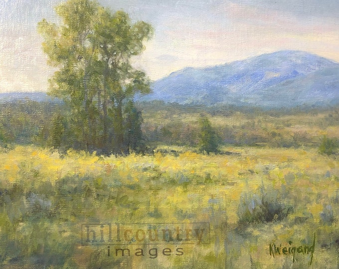 Taos New Mexico during Summer, Original Oil Painting