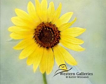 Small Yellow Sunflower,  Signed Fine Art Print