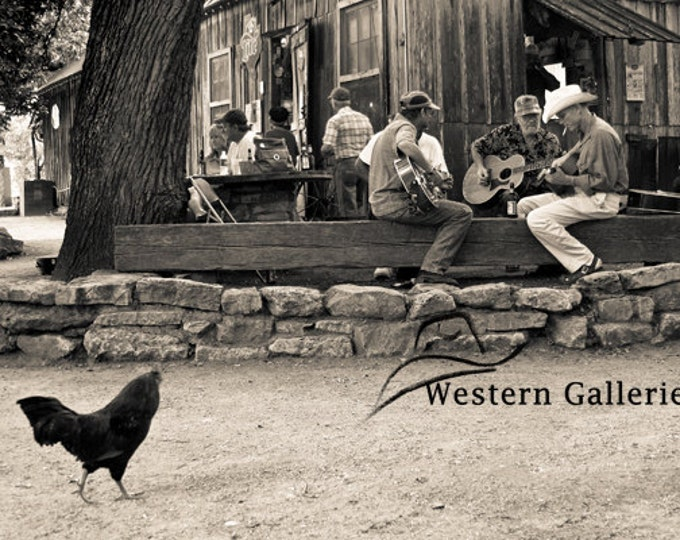 Playing till The Chickens Come Home, Luckenbach Tx Fine Art Print
