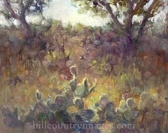 Mini Art Sale - Hill Country Cactus 6x6 Original Oil Painting