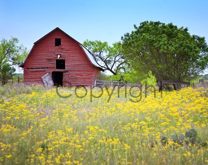 Red Barn, Texas Hill Country Signed Print