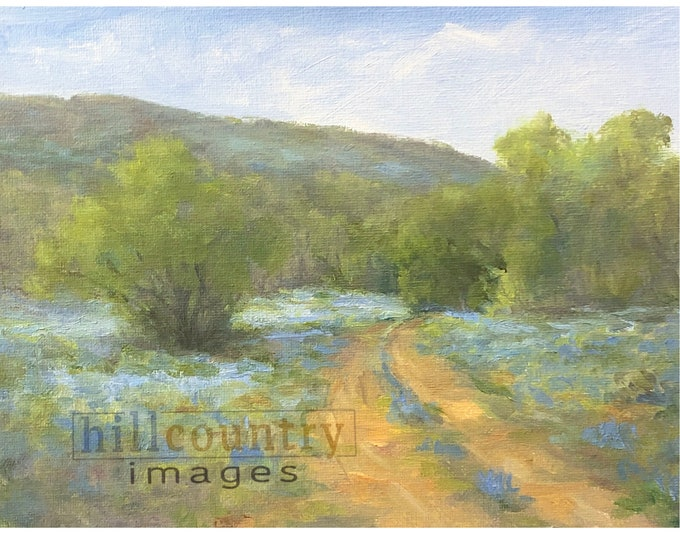 Texas Bluebonnets Study, Original Oil Painting