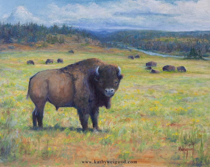 Yellowstone Bison Herd, 16x20 Original Oil Painting on Linen Canvas