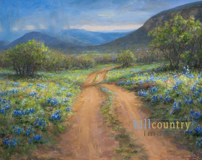 Texas Hill Country Bluebonnets Wildflowers, Off The Loop, Fine Art Print by Fredericksburg Tx artist Willow City Loop