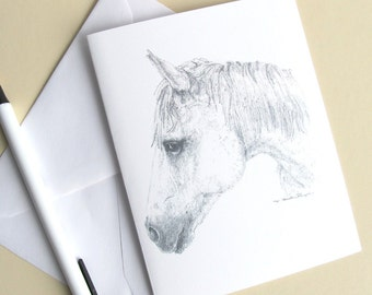 white horse head note cards, set of 6 cards with envelopes